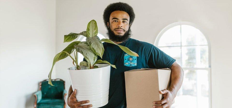 Mudanza de plantas
