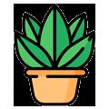 Transporte de plantas
